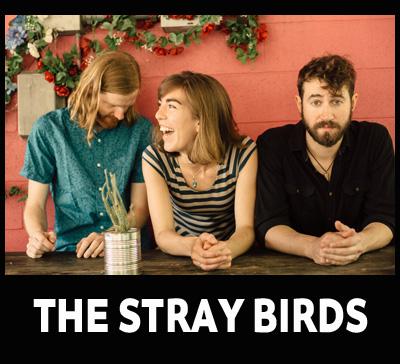 The Stray Birds